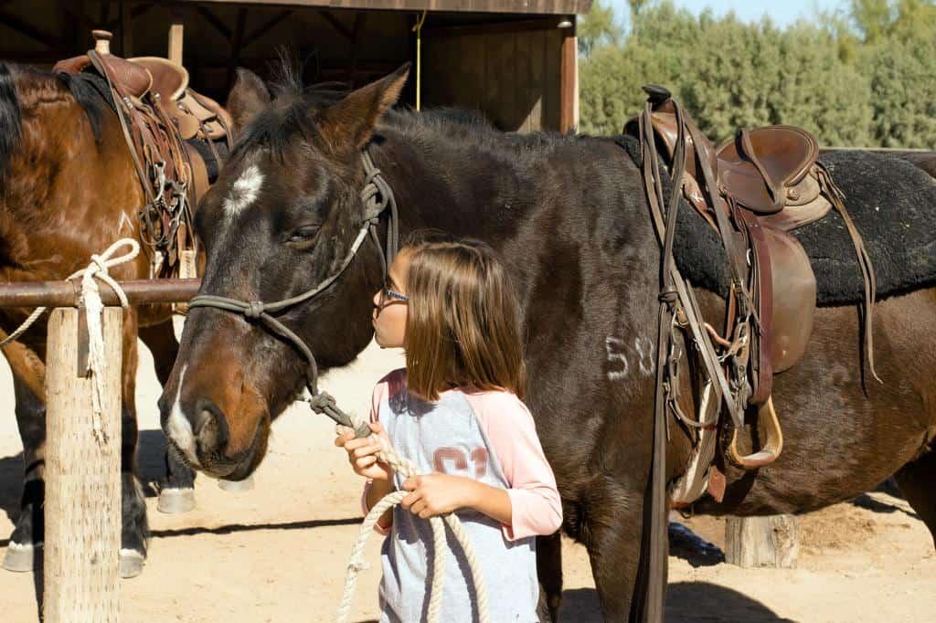 arizona dude ranch