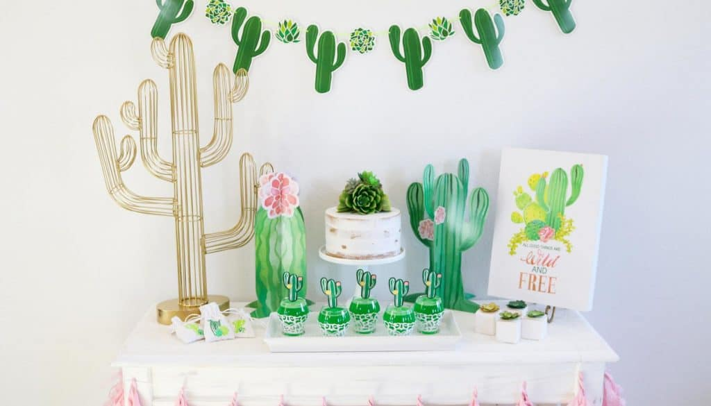 cactus baby shower themes