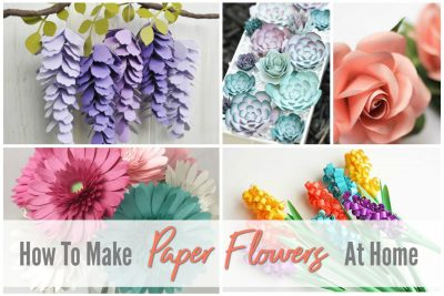gorgeous paper roses