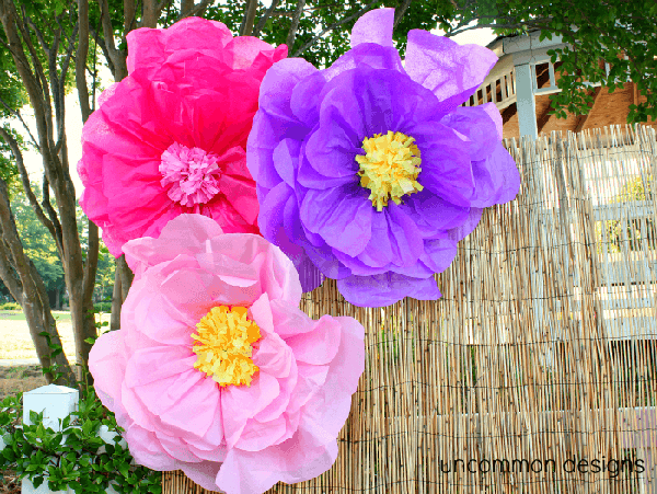 Giant Tissue paper flowers