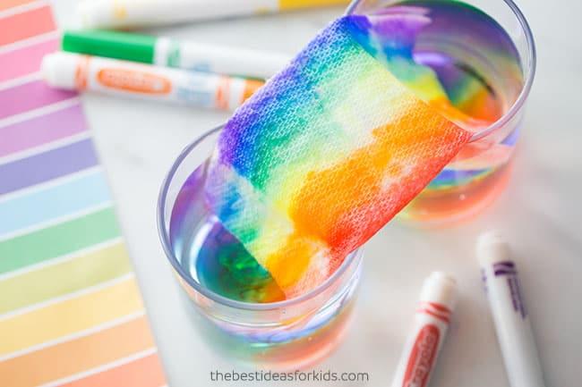 Grow a Rainbow experiment